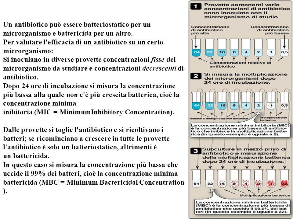 Un antibiotico può essere batteriostatico per un microrganismo e battericida per un altro. Per valutare l efficacia di un antibiotico su un certo microrganismo: