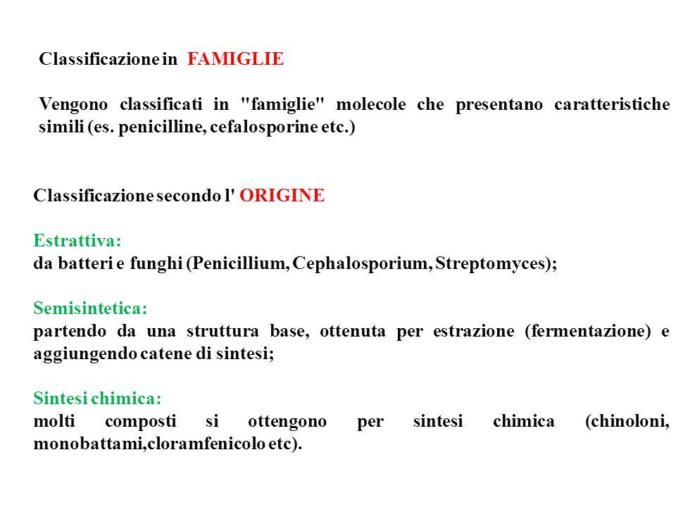 Classificazione in FAMIGLIE