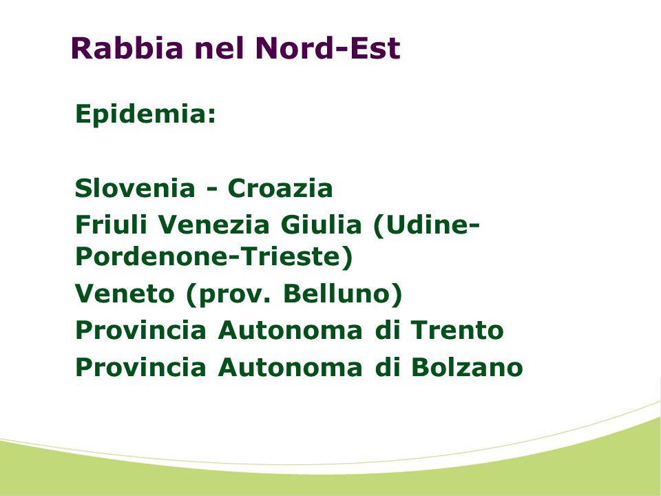Rabbia nel Nord-Est Epidemia: Slovenia - Croazia