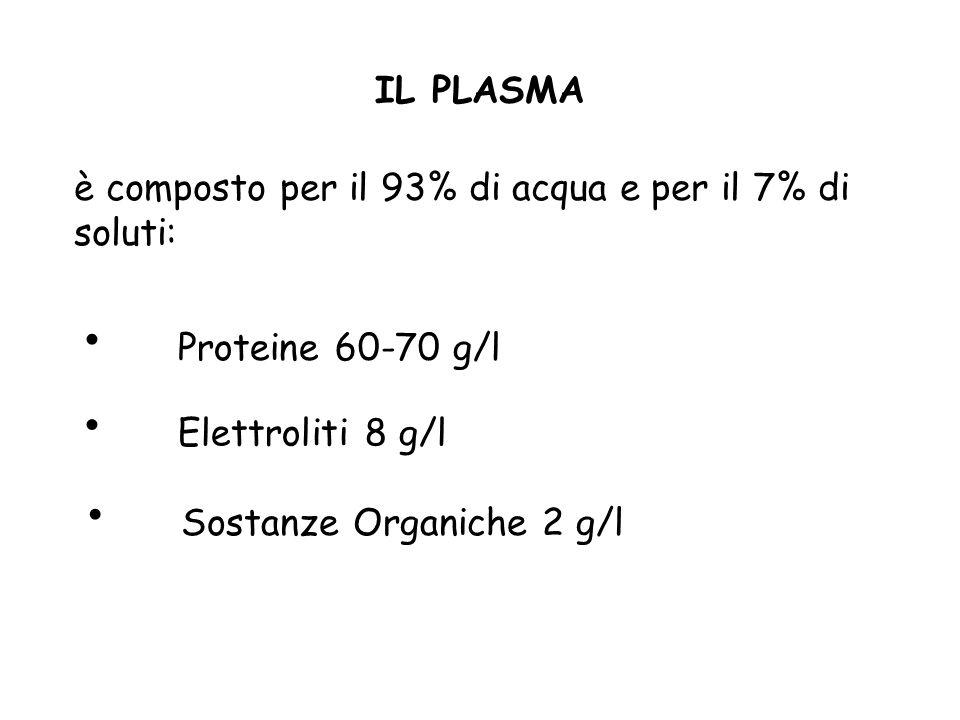 IL PLASMAè composto per il 93% di acqua e per il 7% di soluti: Proteine 60-70 g/l. Elettroliti 8 g/l.