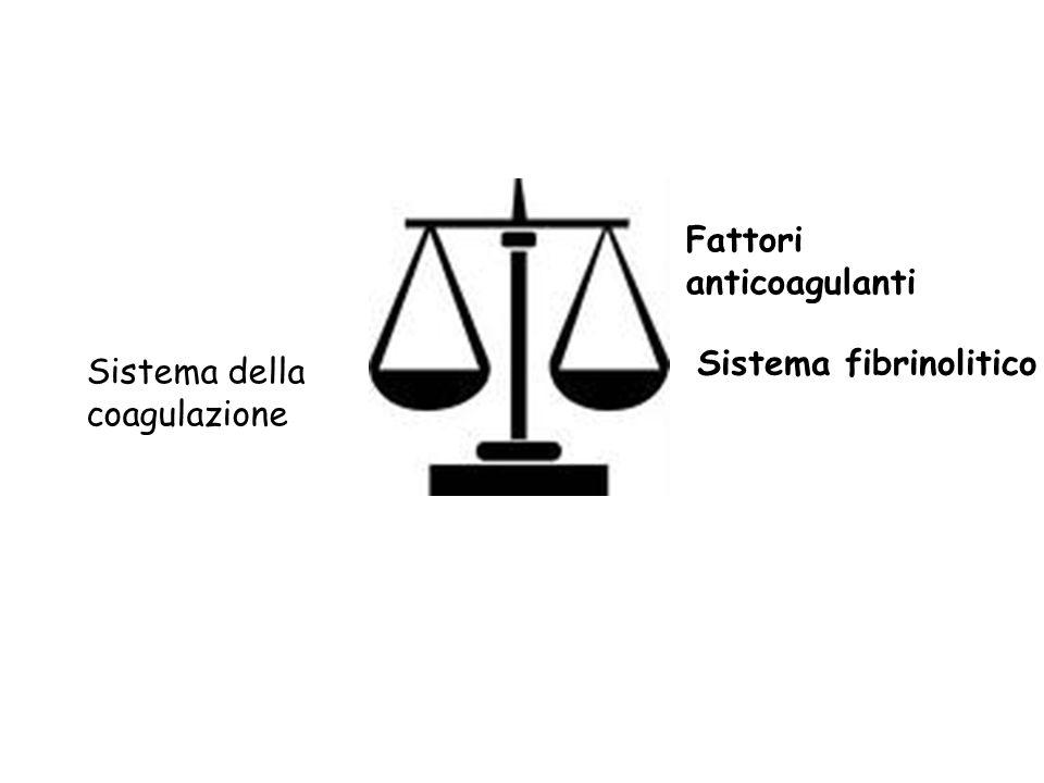 Fattori anticoagulanti Sistema fibrinolitico Sistema della coagulazione