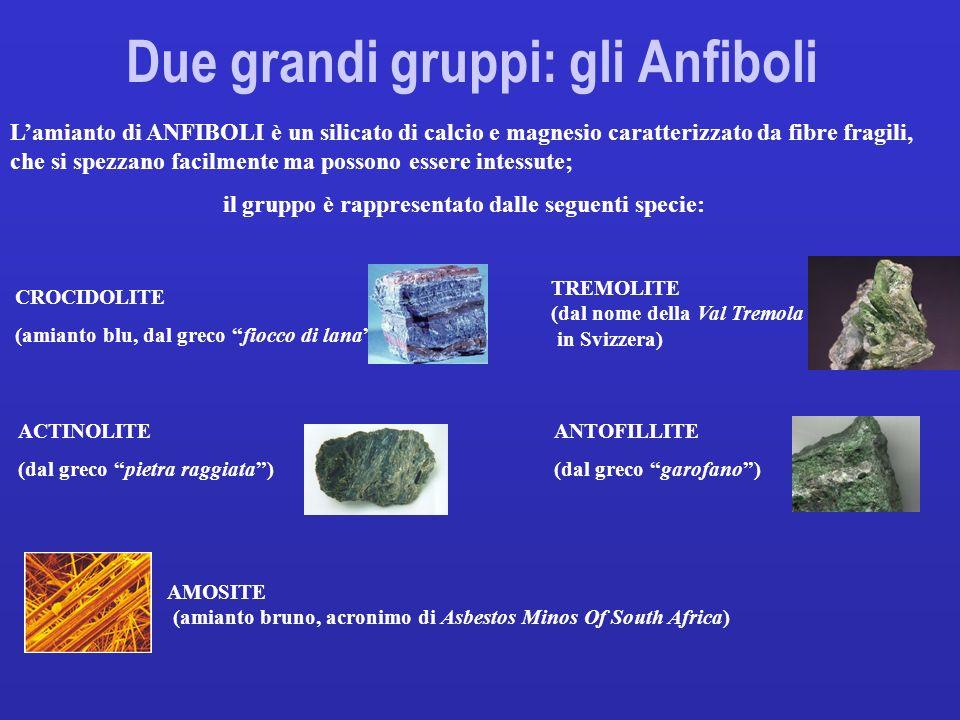 Due grandi gruppi: gli Anfiboli