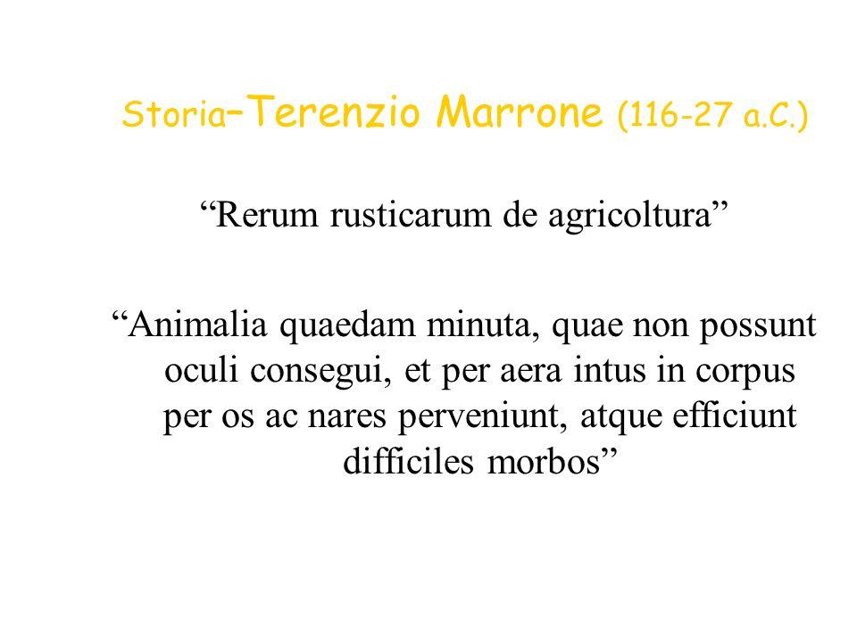 Storia–Terenzio Marrone (116-27 a.C.)