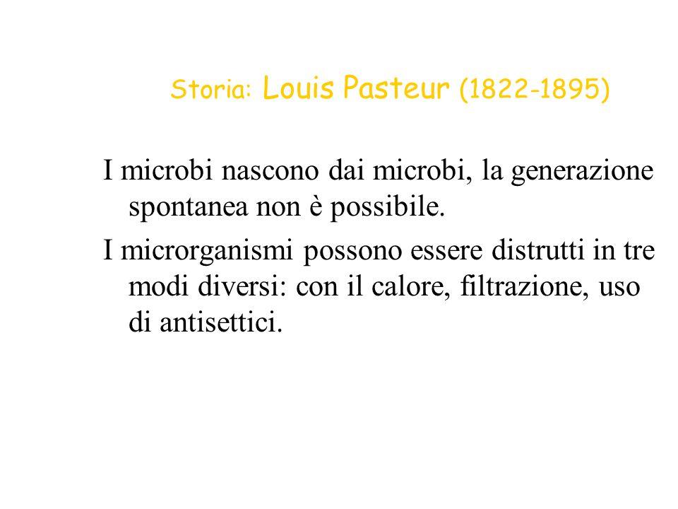 Storia: Louis Pasteur (1822-1895)