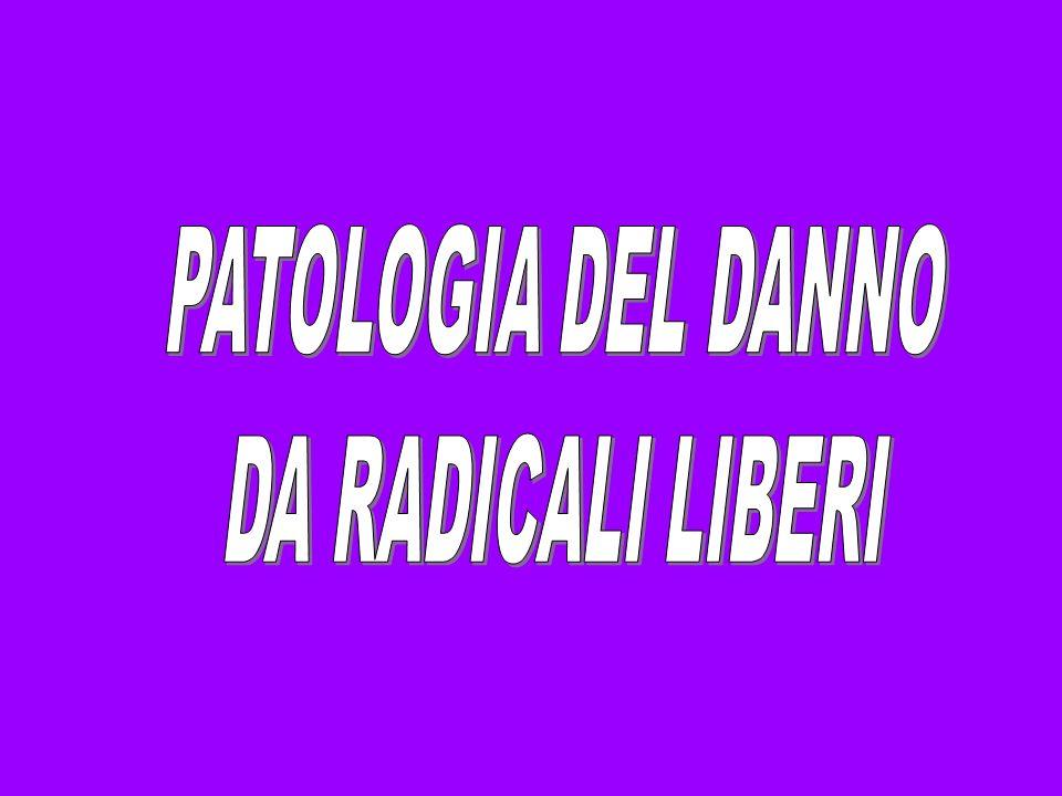PATOLOGIA DEL DANNO DA RADICALI LIBERI