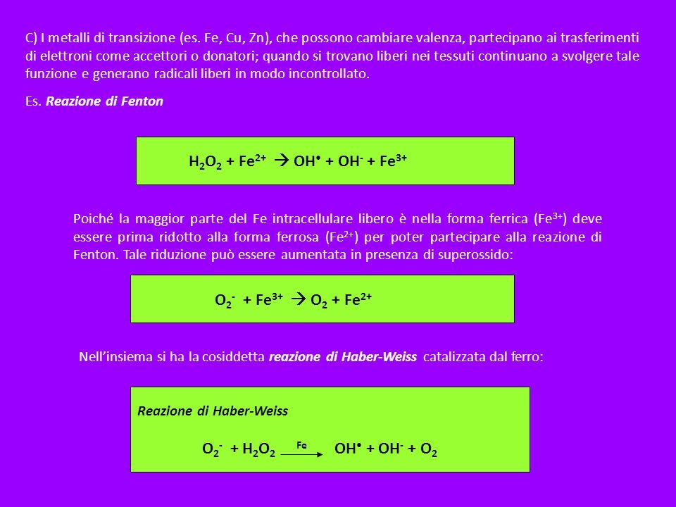 H2O2 + Fe2+  OH• + OH- + Fe3+ O2- + Fe3+  O2 + Fe2+