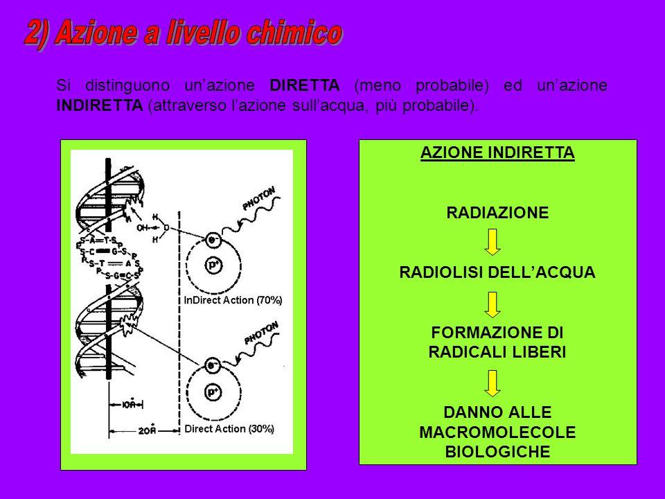 2) Azione a livello chimico