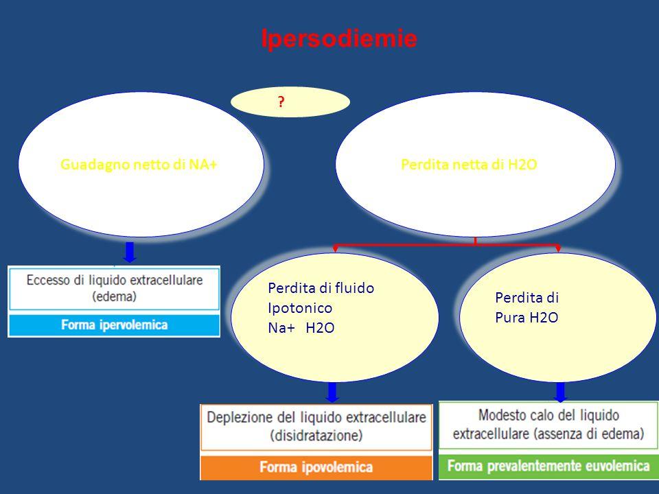 Ipersodiemie Guadagno netto di NA+ Perdita netta di H2O