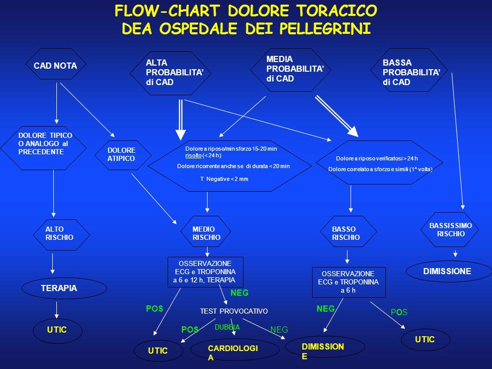 FLOW-CHART DOLORE TORACICO DEA OSPEDALE DEI PELLEGRINI