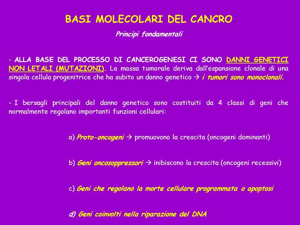 BASI MOLECOLARI DEL CANCRO Principi fondamentali