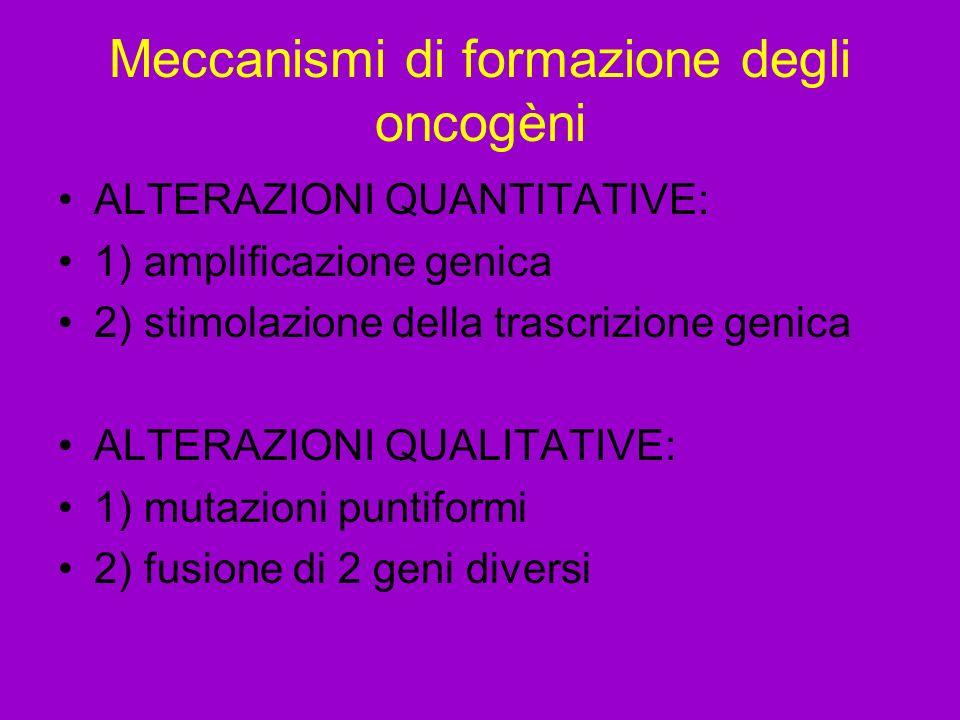 Meccanismi di formazione degli oncogèni