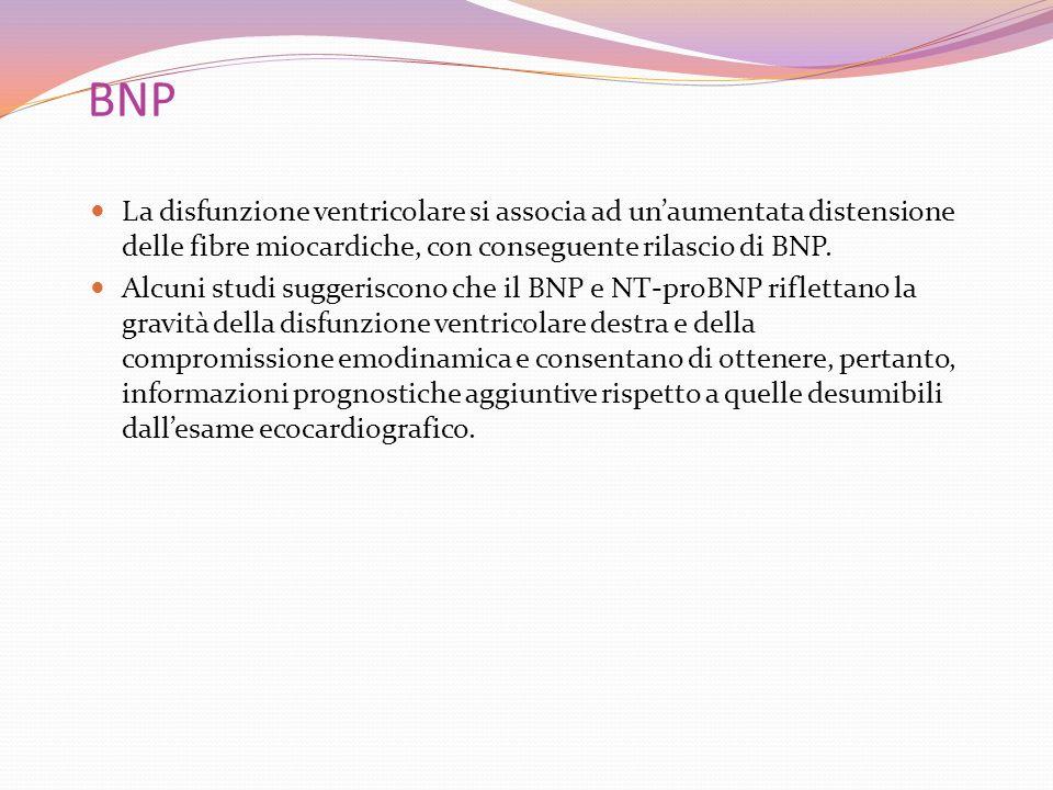 BNP La disfunzione ventricolare si associa ad un'aumentata distensione delle fibre miocardiche, con conseguente rilascio di BNP.