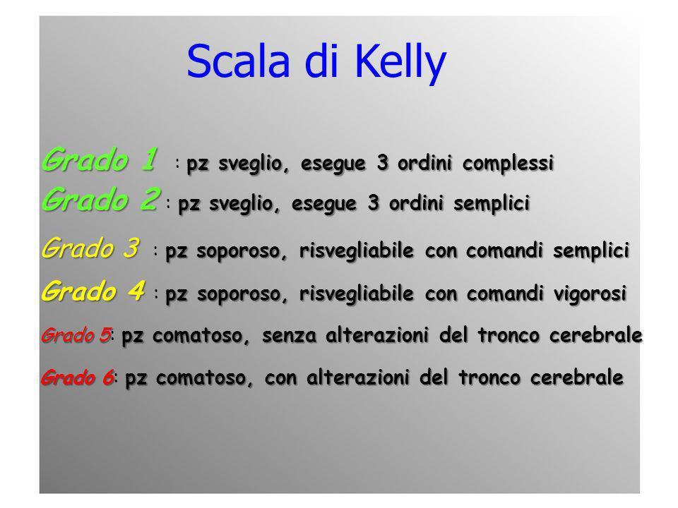 Scala di Kelly Grado 1 : pz sveglio, esegue 3 ordini complessi