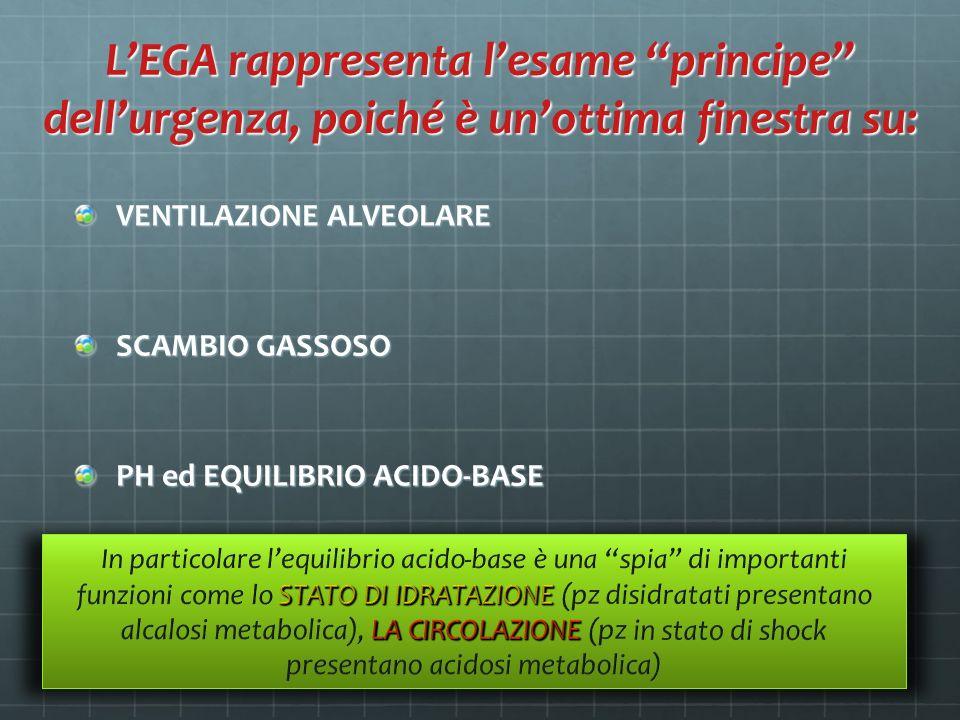 L'EGA rappresenta l'esame principe dell'urgenza, poiché è un'ottima finestra su: