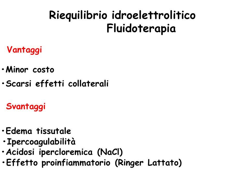 Riequilibrio idroelettrolitico Fluidoterapia