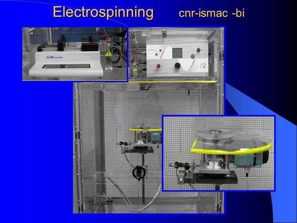 Electrospinning cnr-ismac -bi