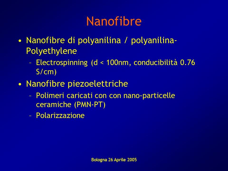 Nanofibre Nanofibre di polyanilina / polyanilina-Polyethylene