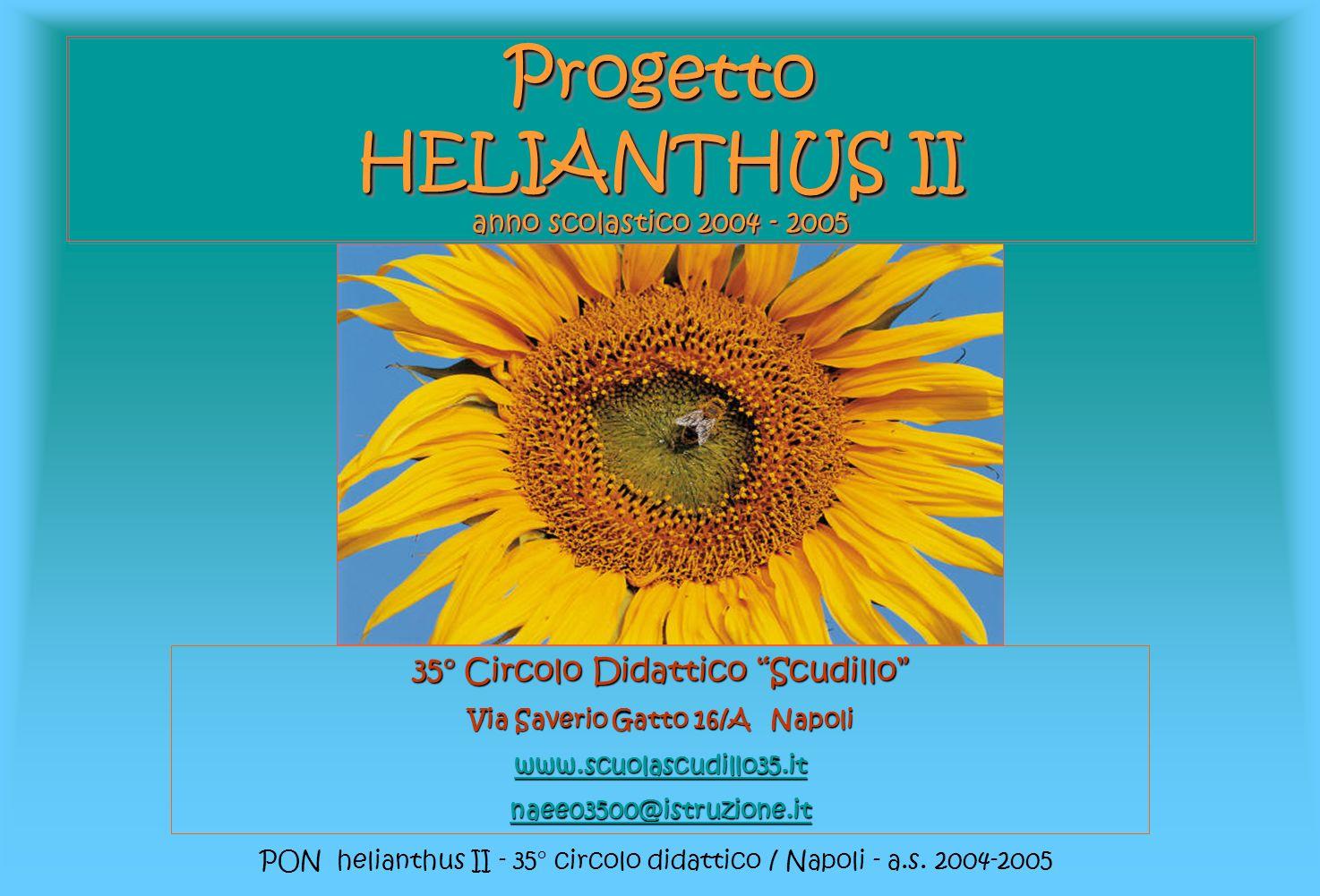 Progetto HELIANTHUS II anno scolastico 2004 - 2005