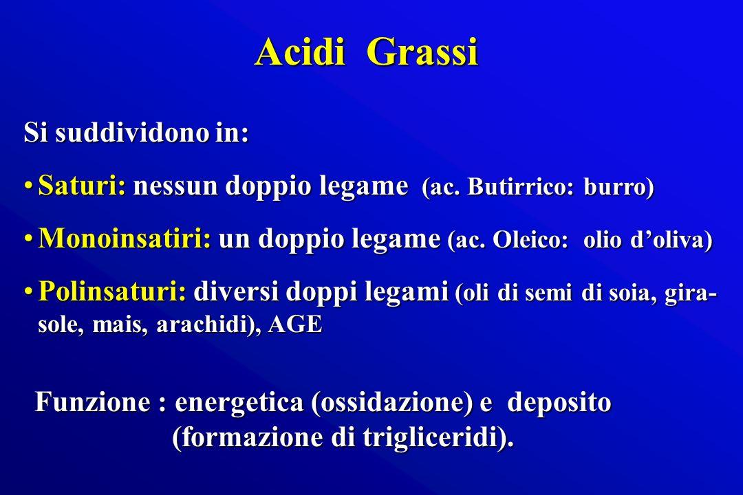 Acidi Grassi Si suddividono in: