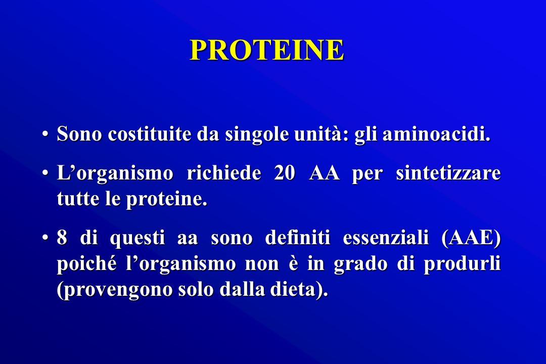 PROTEINE Sono costituite da singole unità: gli aminoacidi.