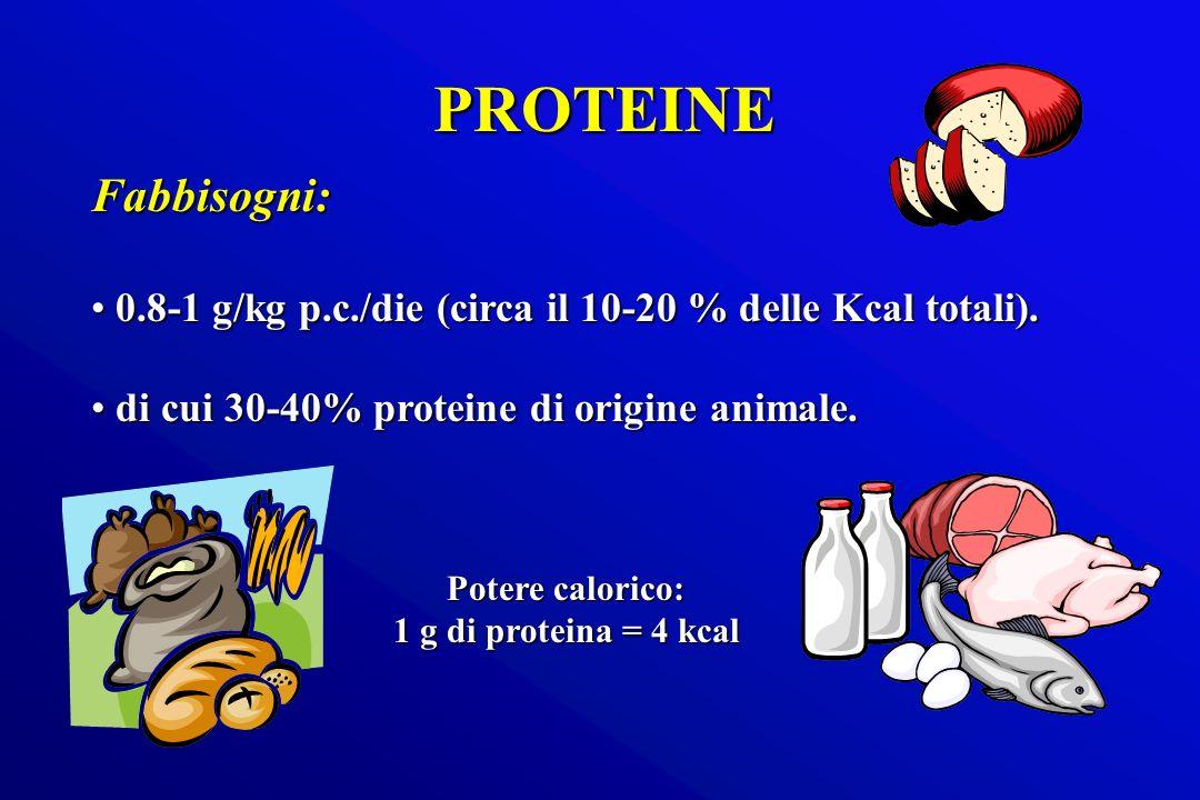 PROTEINE Fabbisogni: 0.8-1 g/kg p.c./die (circa il 10-20 % delle Kcal totali). di cui 30-40% proteine di origine animale.