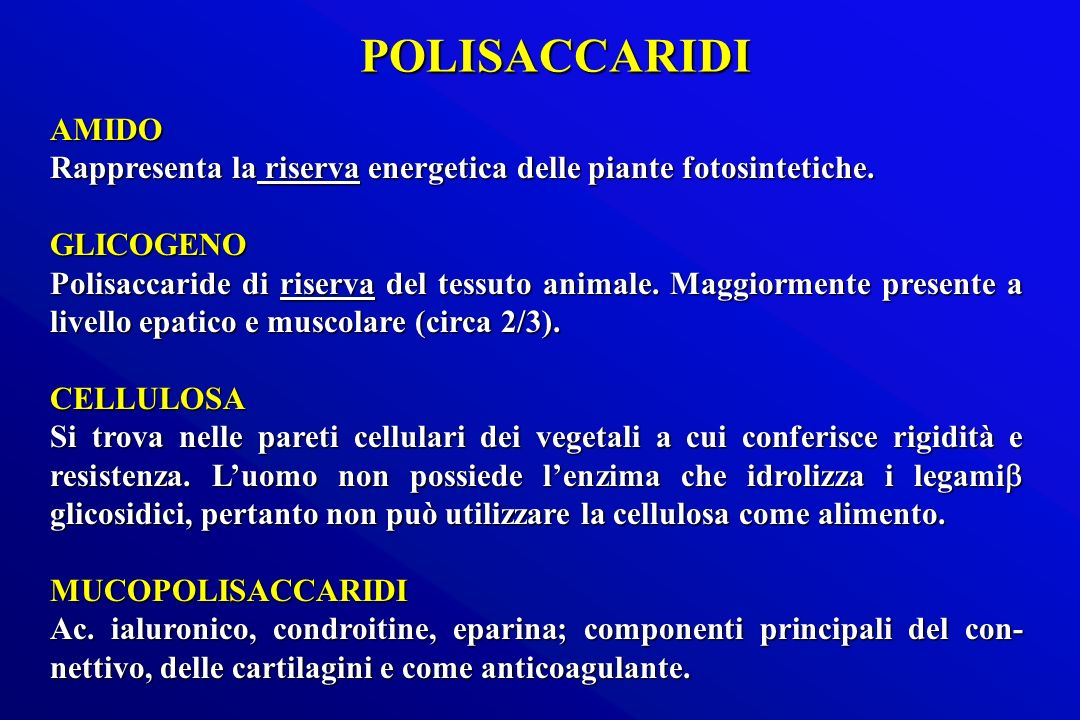 POLISACCARIDI AMIDO. Rappresenta la riserva energetica delle piante fotosintetiche. GLICOGENO.