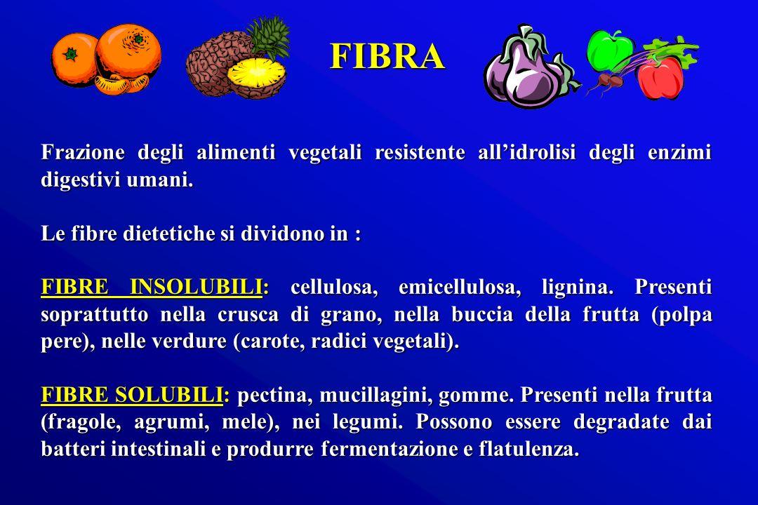 FIBRA Frazione degli alimenti vegetali resistente all'idrolisi degli enzimi digestivi umani. Le fibre dietetiche si dividono in :