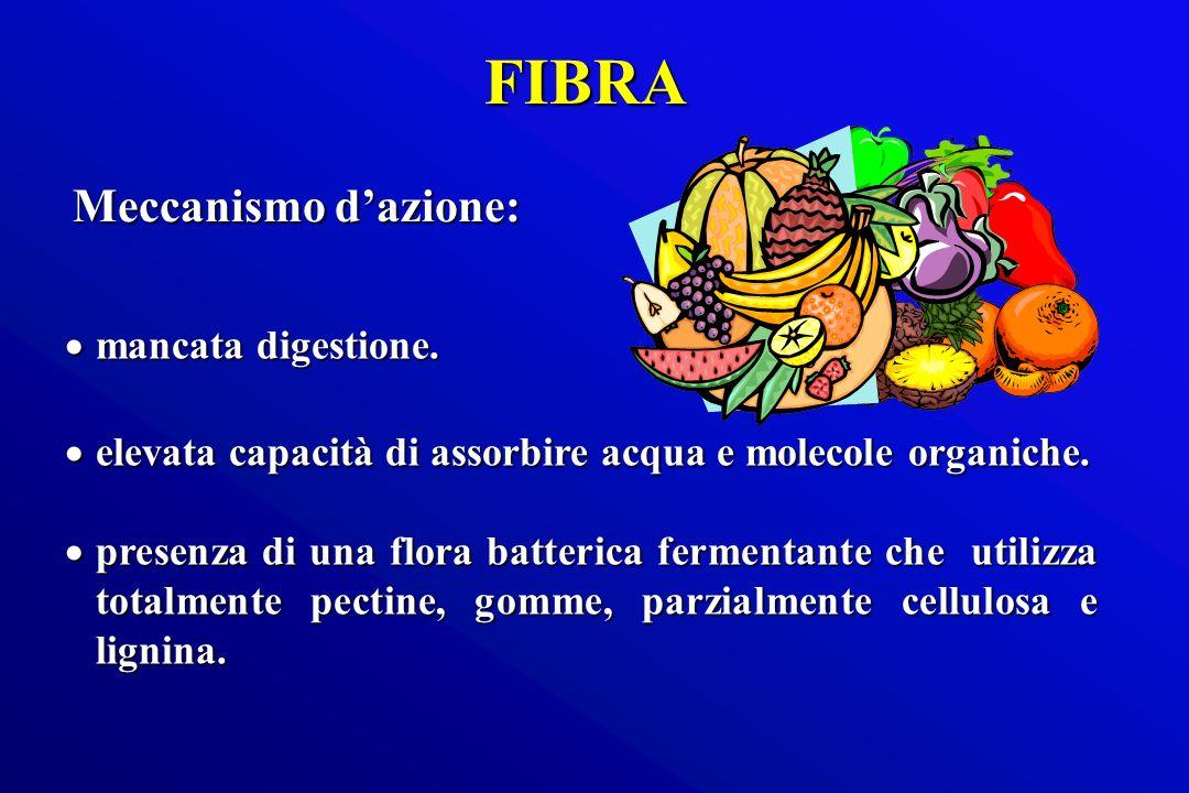 FIBRA Meccanismo d'azione: mancata digestione.