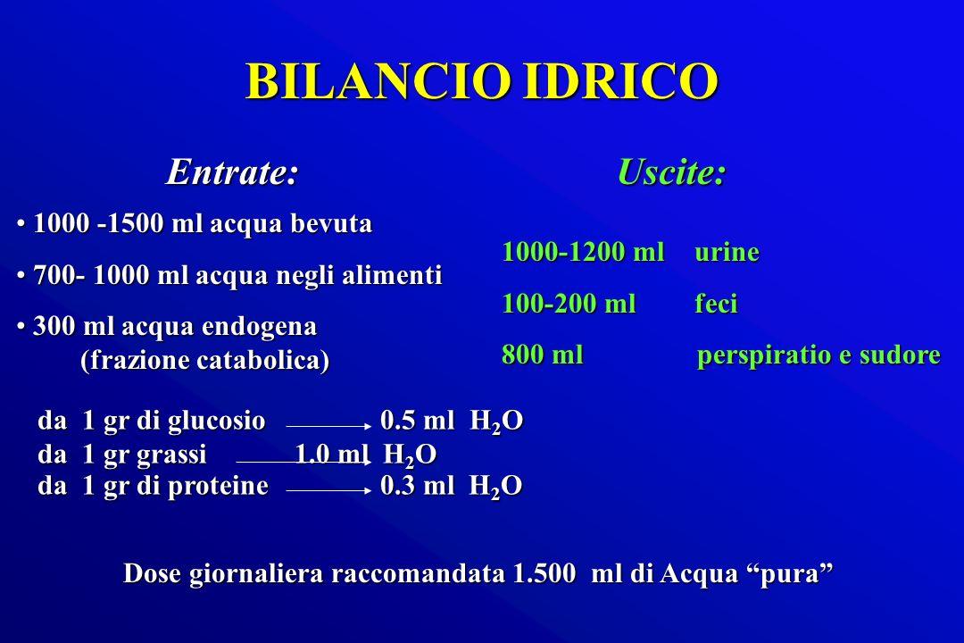 BILANCIO IDRICO Entrate: Uscite: 1000 -1500 ml acqua bevuta