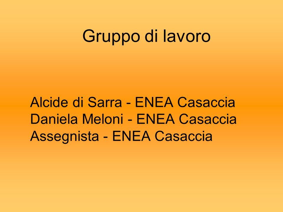 Gruppo di lavoro Alcide di Sarra - ENEA Casaccia Daniela Meloni - ENEA Casaccia Assegnista - ENEA Casaccia.