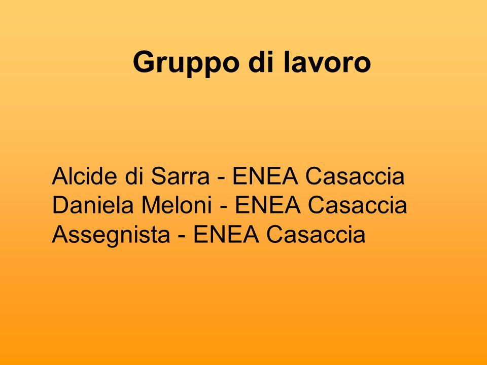 Gruppo di lavoroAlcide di Sarra - ENEA Casaccia Daniela Meloni - ENEA Casaccia Assegnista - ENEA Casaccia.