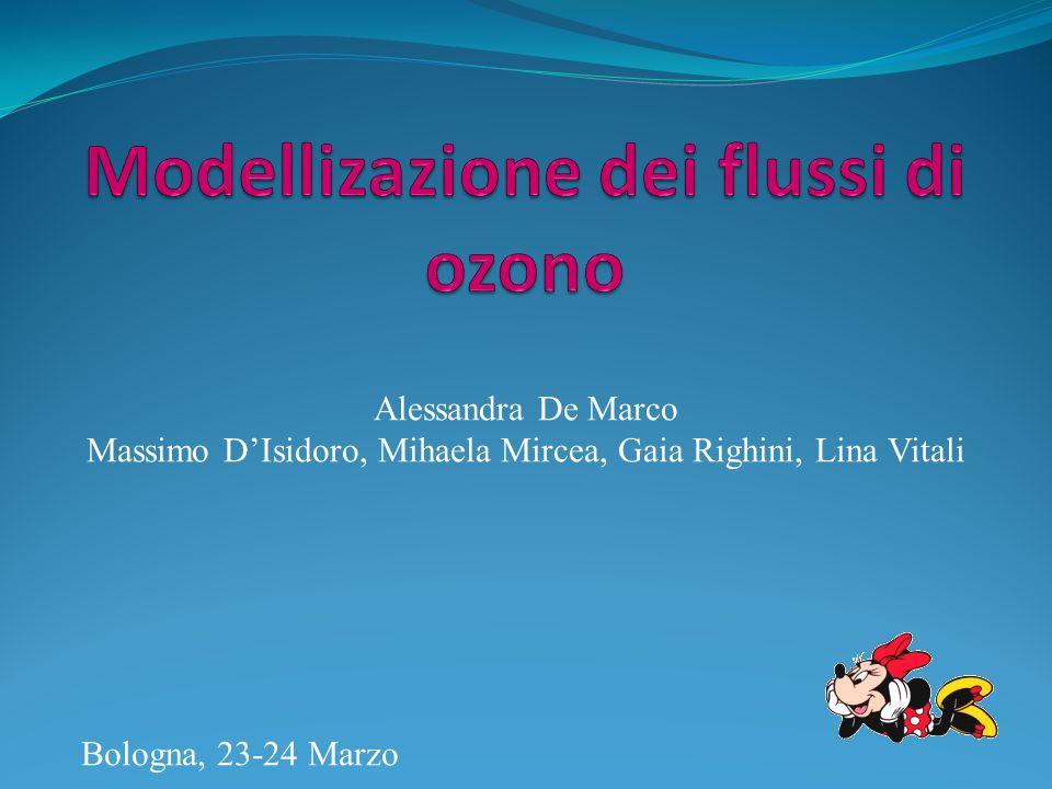 Modellizazione dei flussi di ozono