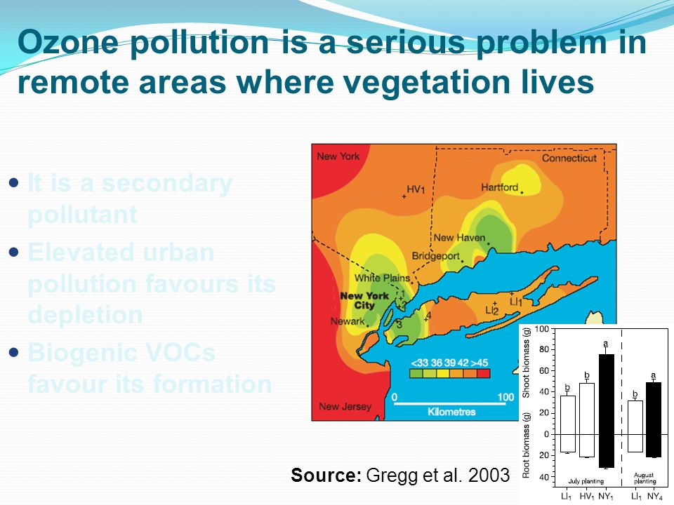 Ozone pollution is a serious problem in remote areas where vegetation lives