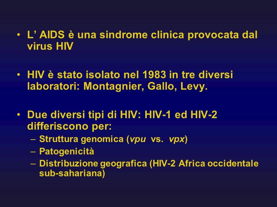 L' AIDS è una sindrome clinica provocata dal virus HIV
