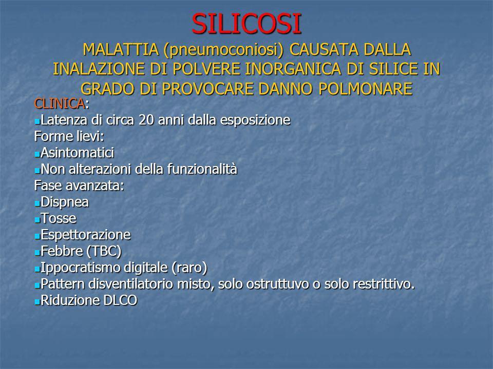 SILICOSI MALATTIA (pneumoconiosi) CAUSATA DALLA INALAZIONE DI POLVERE INORGANICA DI SILICE IN GRADO DI PROVOCARE DANNO POLMONARE