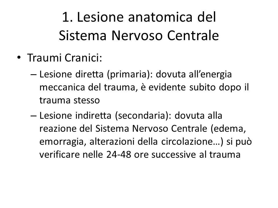 1. Lesione anatomica del Sistema Nervoso Centrale