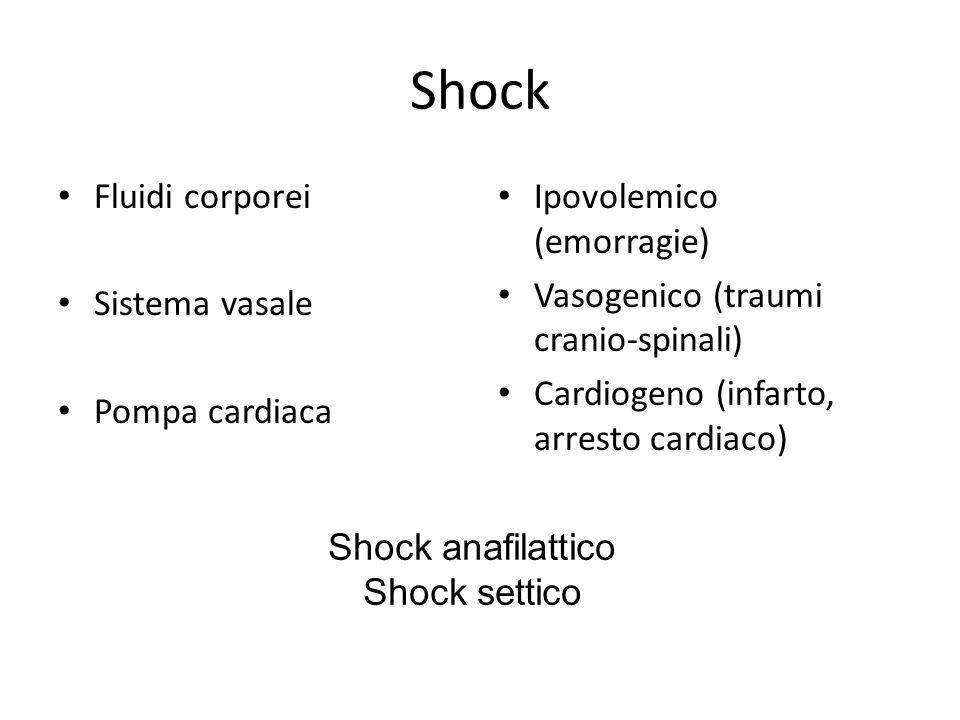 Shock Fluidi corporei Sistema vasale Pompa cardiaca