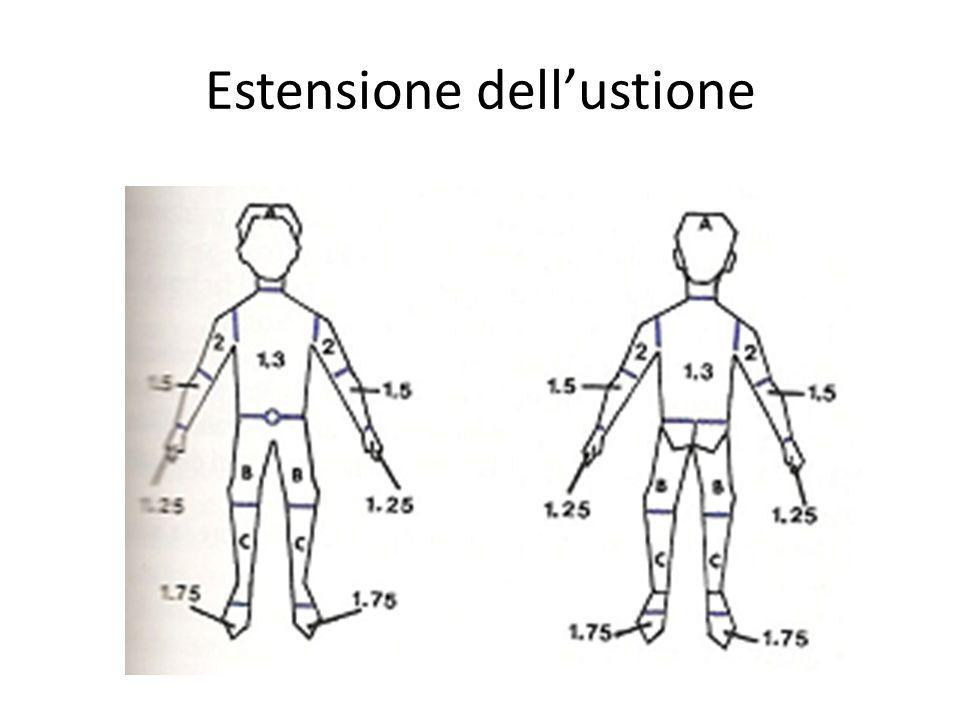Estensione dell'ustione