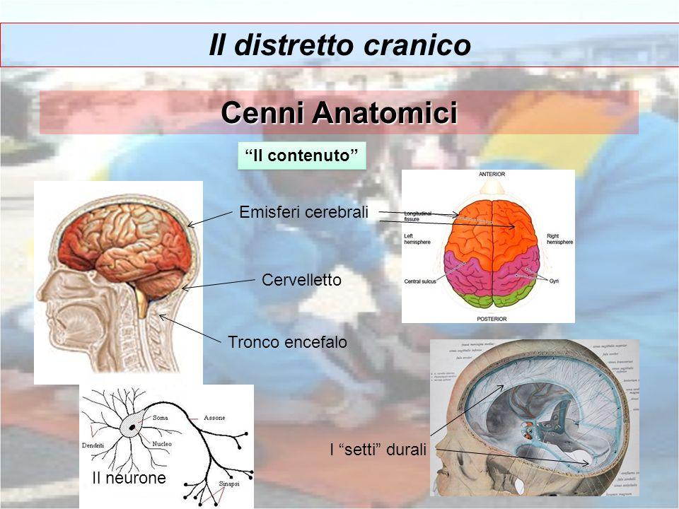 Il distretto cranico Cenni Anatomici