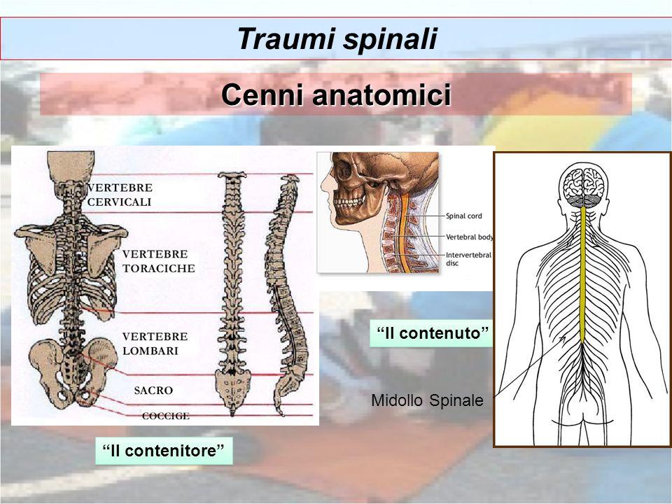Traumi spinali Cenni anatomici