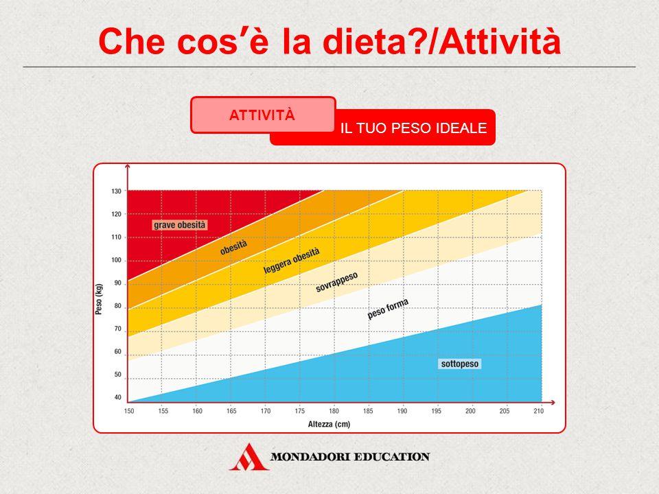 Che cos'è la dieta /Attività