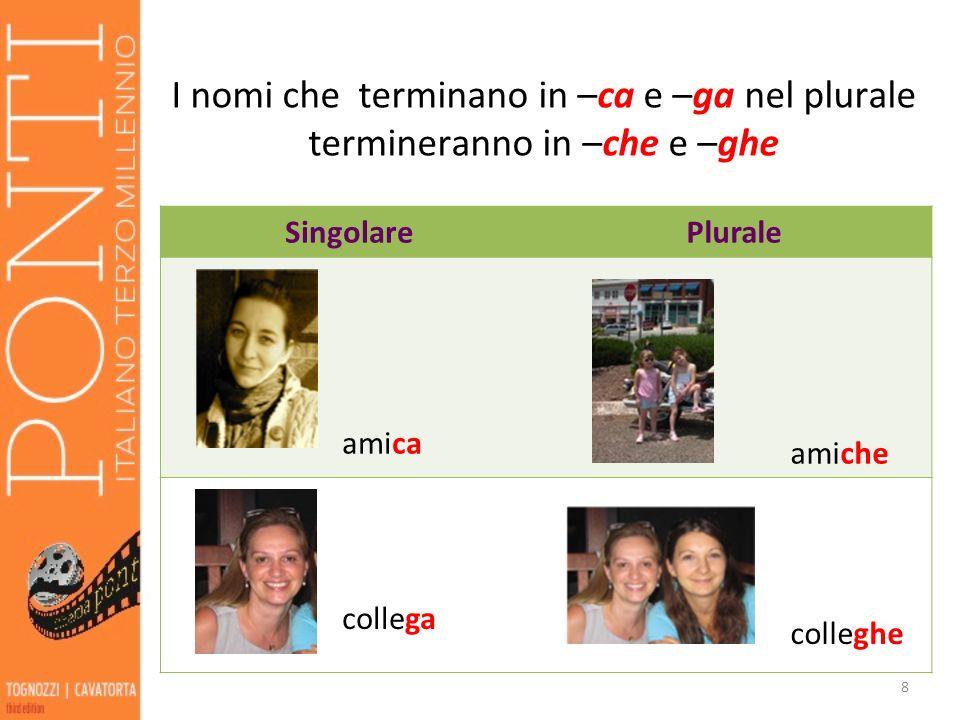 I nomi che terminano in –ca e –ga nel plurale termineranno in –che e –ghe