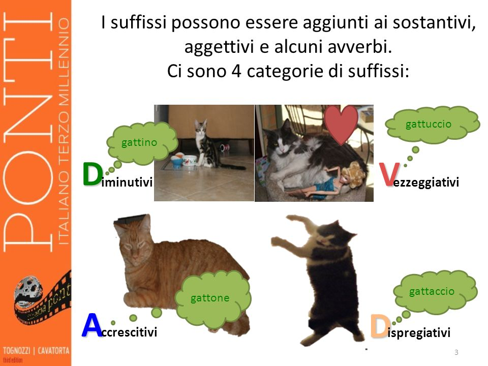 Ci sono 4 categorie di suffissi:
