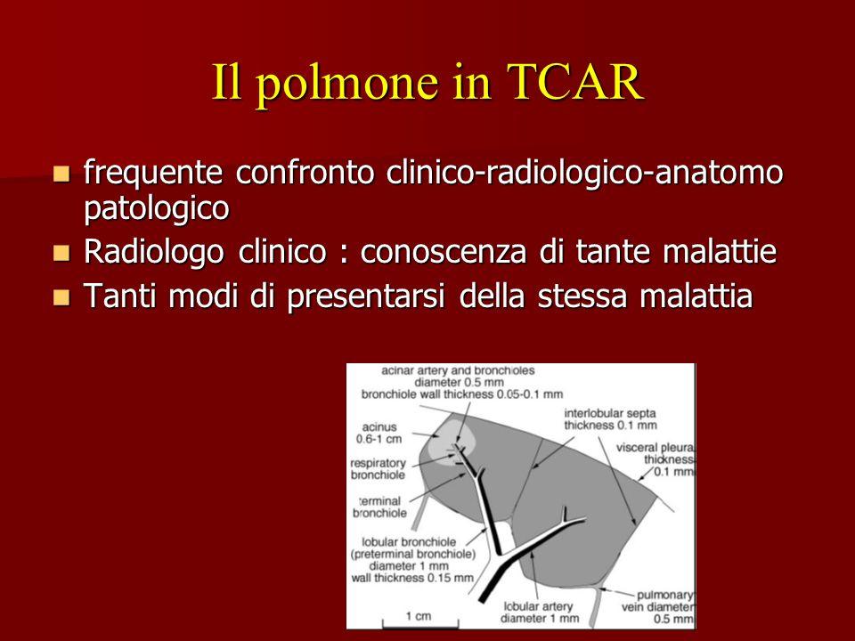 Il polmone in TCAR frequente confronto clinico-radiologico-anatomo patologico. Radiologo clinico : conoscenza di tante malattie.