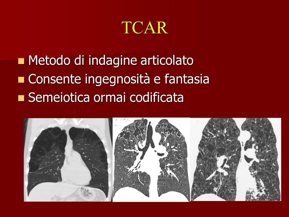 TCAR Metodo di indagine articolato Consente ingegnosità e fantasia