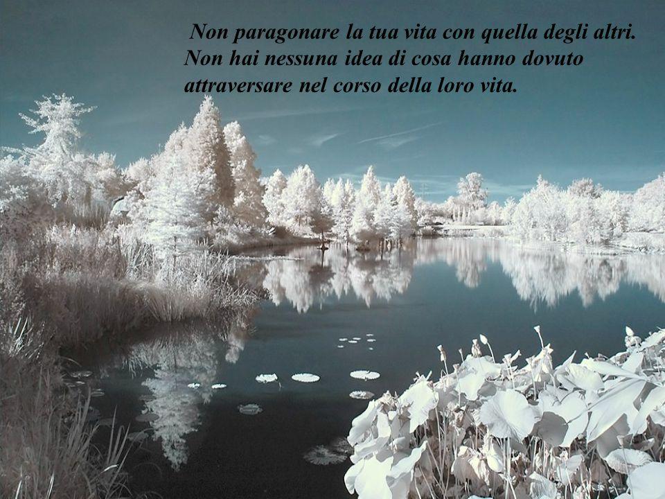 Non paragonare la tua vita con quella degli altri