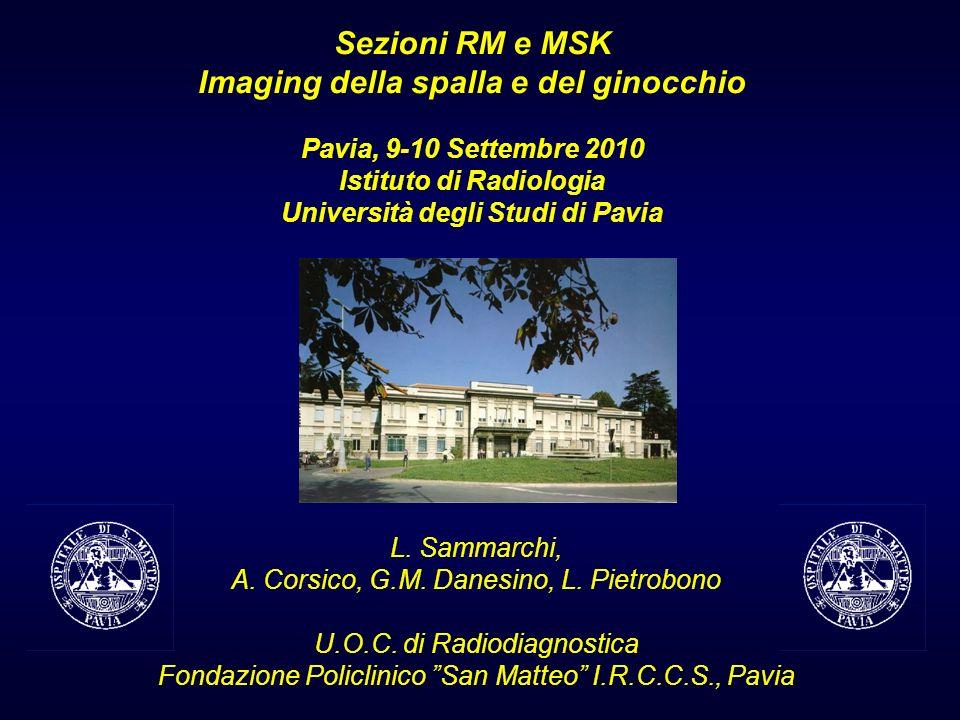 Sezioni RM e MSK Imaging della spalla e del ginocchio Pavia, 9-10 Settembre 2010 Istituto di Radiologia Università degli Studi di Pavia