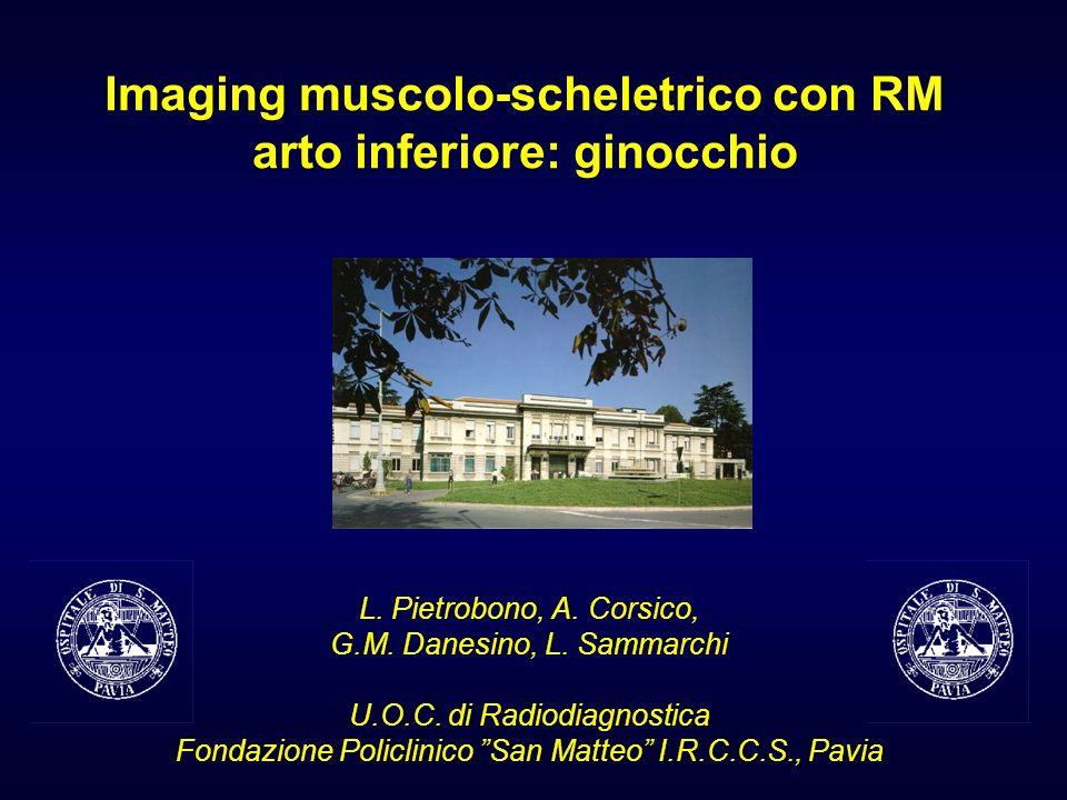Imaging muscolo-scheletrico con RM arto inferiore: ginocchio