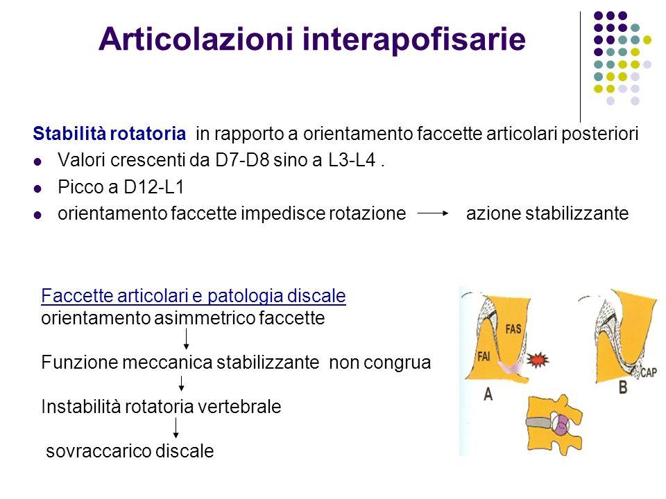 Articolazioni interapofisarie