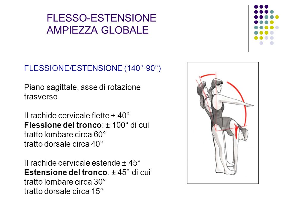 FLESSO-ESTENSIONE AMPIEZZA GLOBALE